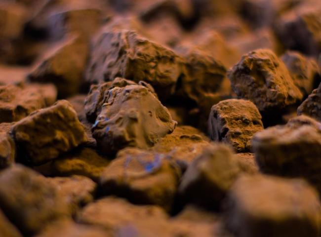 Pavé du St Ulrich - truffes au chocolat noir des seigneurs de Ribeauvillé