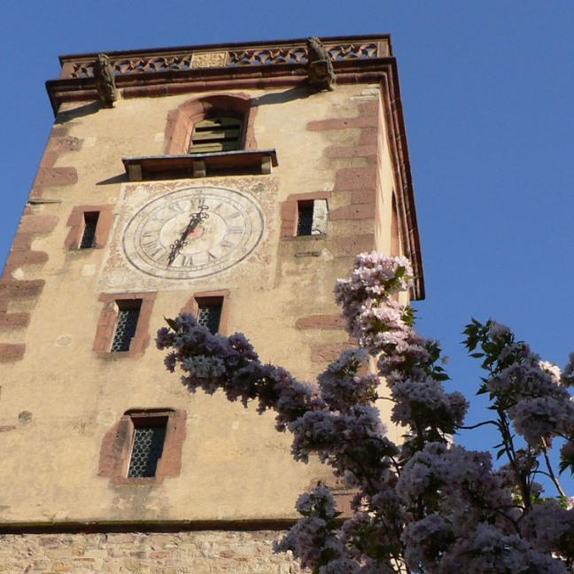 Au pied de la tour des bouchers de Ribeauvillé